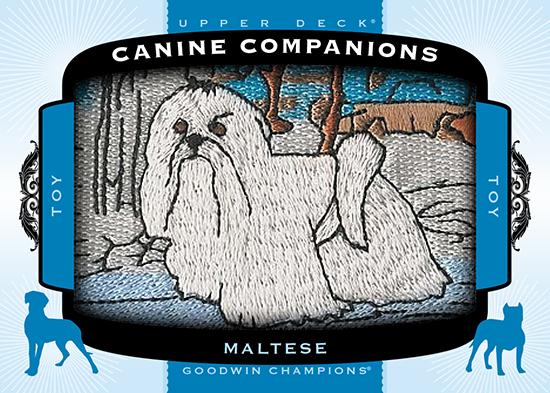 2017-Goodwin-Champions-Canine-Companions-CC91-Maltese