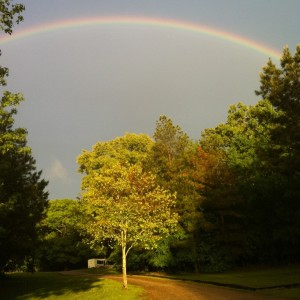 Pinecrest Rainbow-1 5.46.07 PM