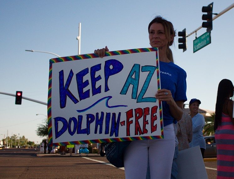 Captive Dolphin Entertainment Centers Are Not Popular in Arizona, New Poll Finds