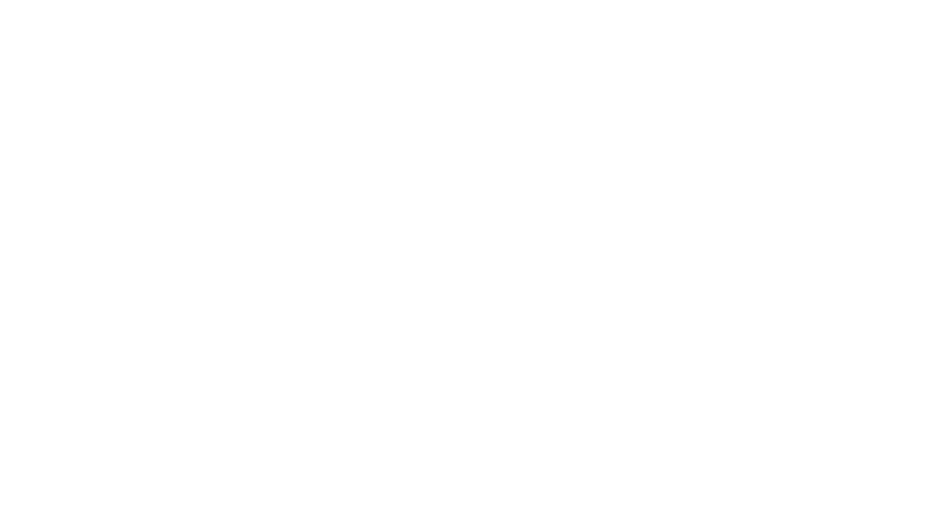 Fuzz on the Lens Productions