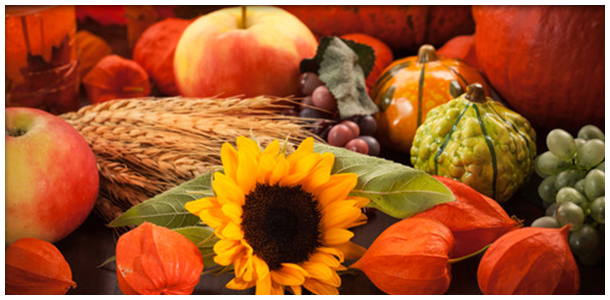 November events in Truckee 2014