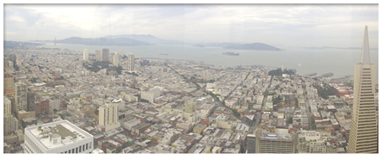 san francisco flooring contractors and custom flooring options in SF