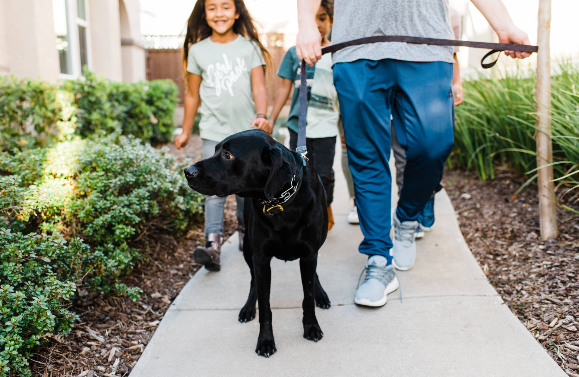 Ruthie Ridley Blog Freshpet provides, real food to pets. From the care they take to source ingredients, to the moment it reaches our homes, Freshpet's integrity, transparency and social responsibility are second to none. SO glad we were introduced to them!