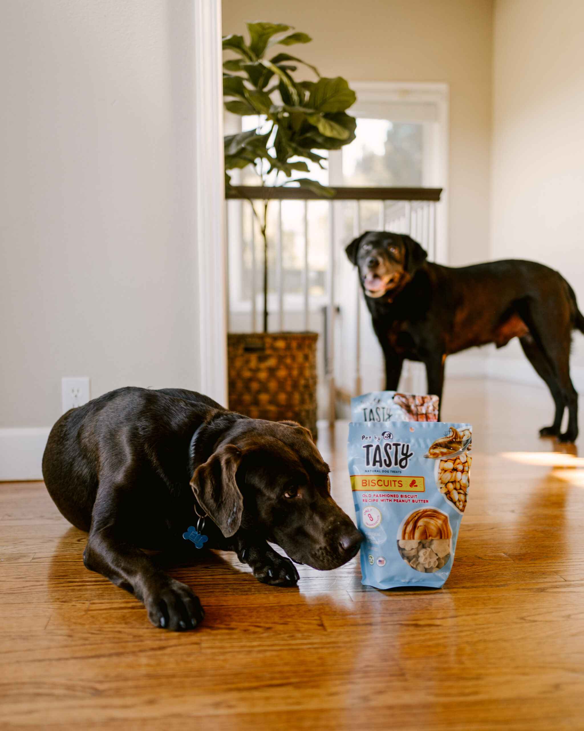 Ruthie Ridley Blog Tasty Treats For Your Pets At Target