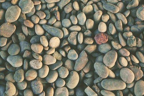 Pebbles And Stone for increasing humidity