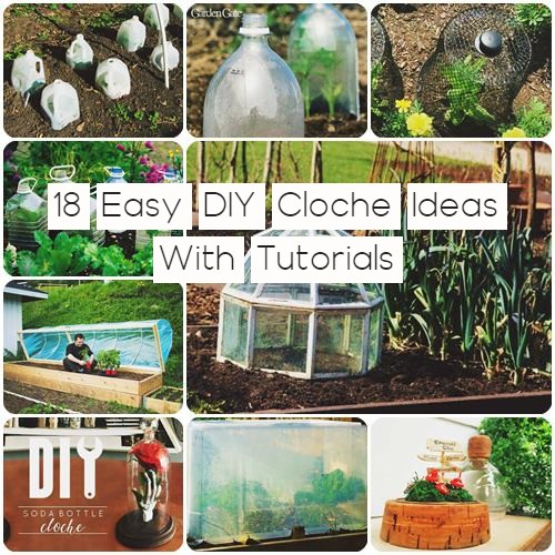 18 Easy DIY Cloche Ideas With Tutorials