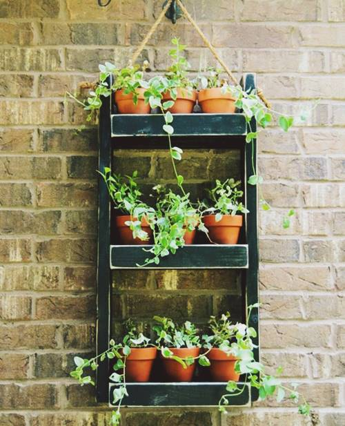 Herb Wood Wall Planter