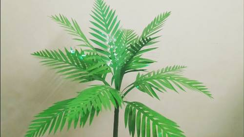 Palm Tree Frome Plastic File Covers