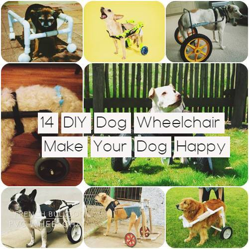 DIY dog wheelchair Make Your Dog Happy