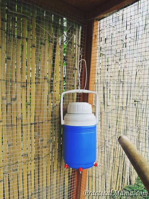 DIY Waterer From Beverage Cooler
