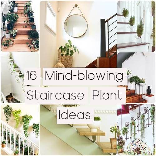 16 Mind-blowing Staircase Plant Ideas