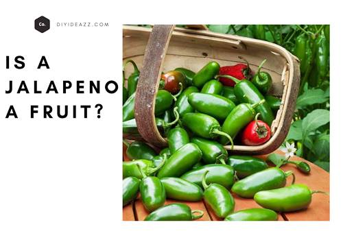 is a jalapeno a fruit?