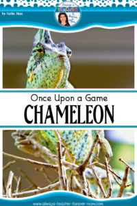 "Once Upon a Game – ""Chameleon"""