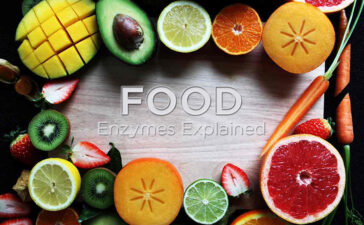 Food Enzymes Explained Blog Featured Image
