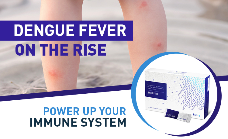 Power Up Your Immune System With Shiruto