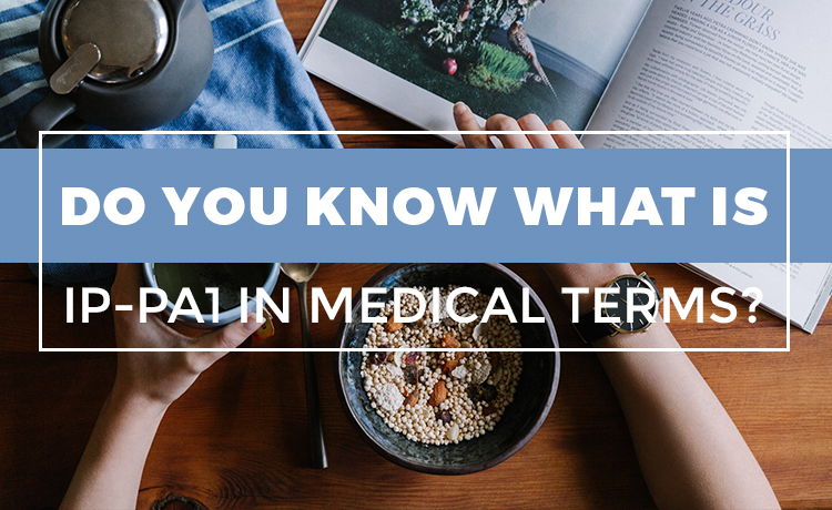 Do You Know What Is IP-PA1 In Medical Terms Blog Featured Image
