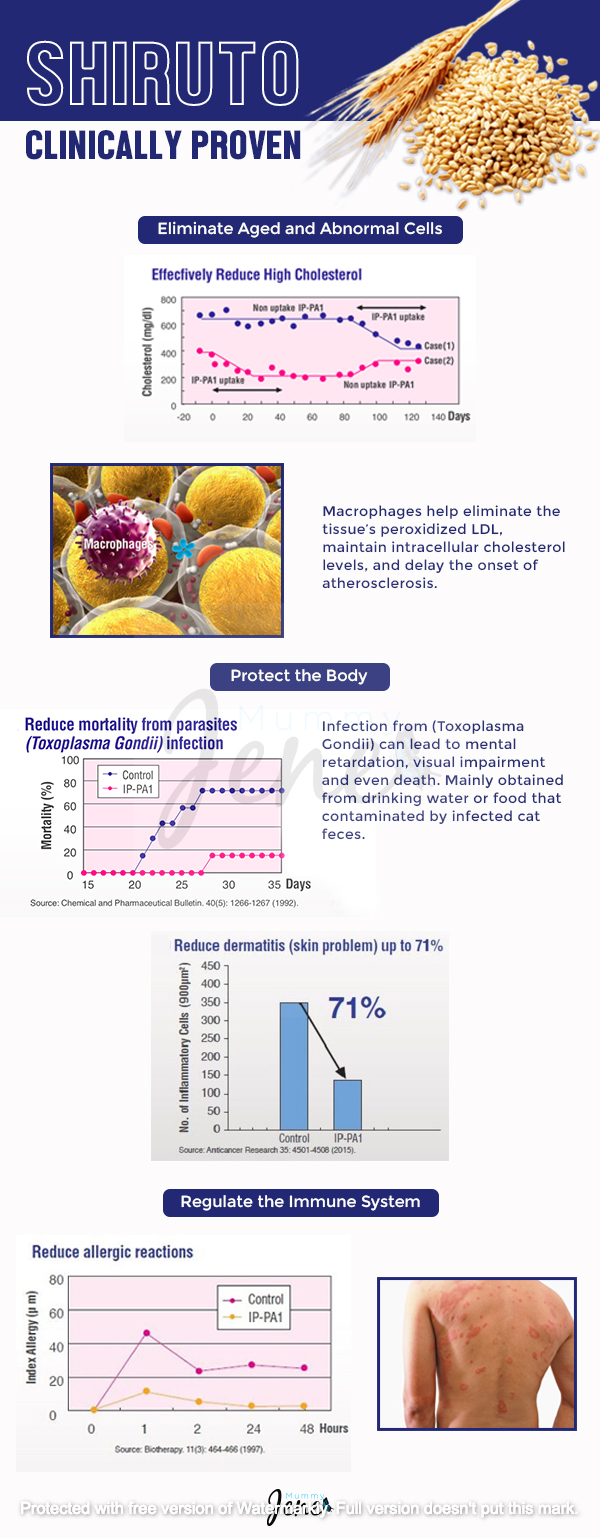 Shiruto Clinically Proven Infographic