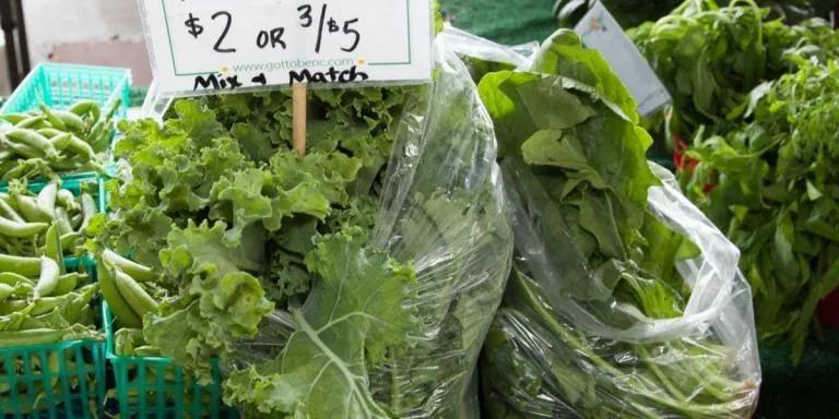 kale non salad recipes