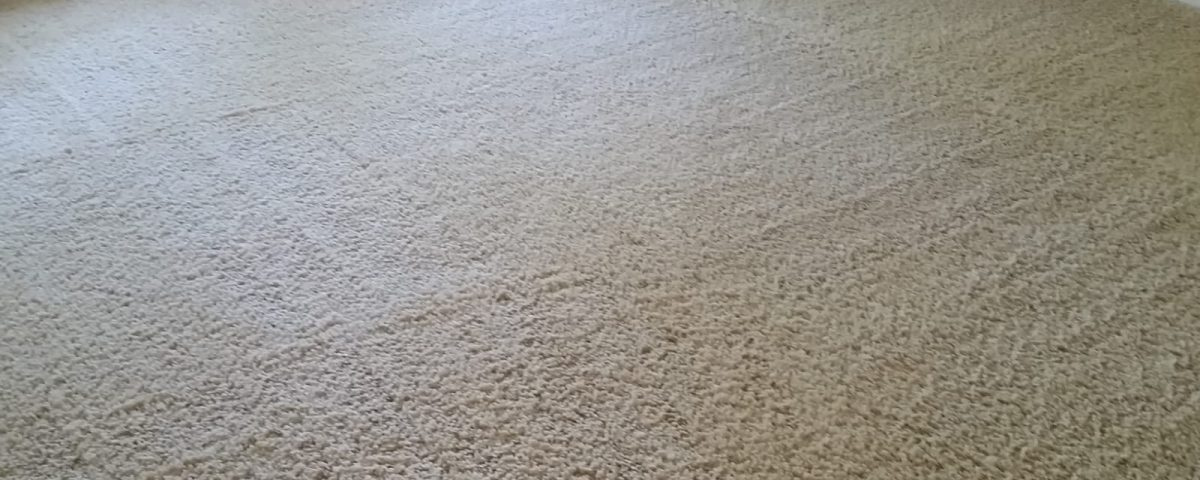 carpet cleaners tustin california