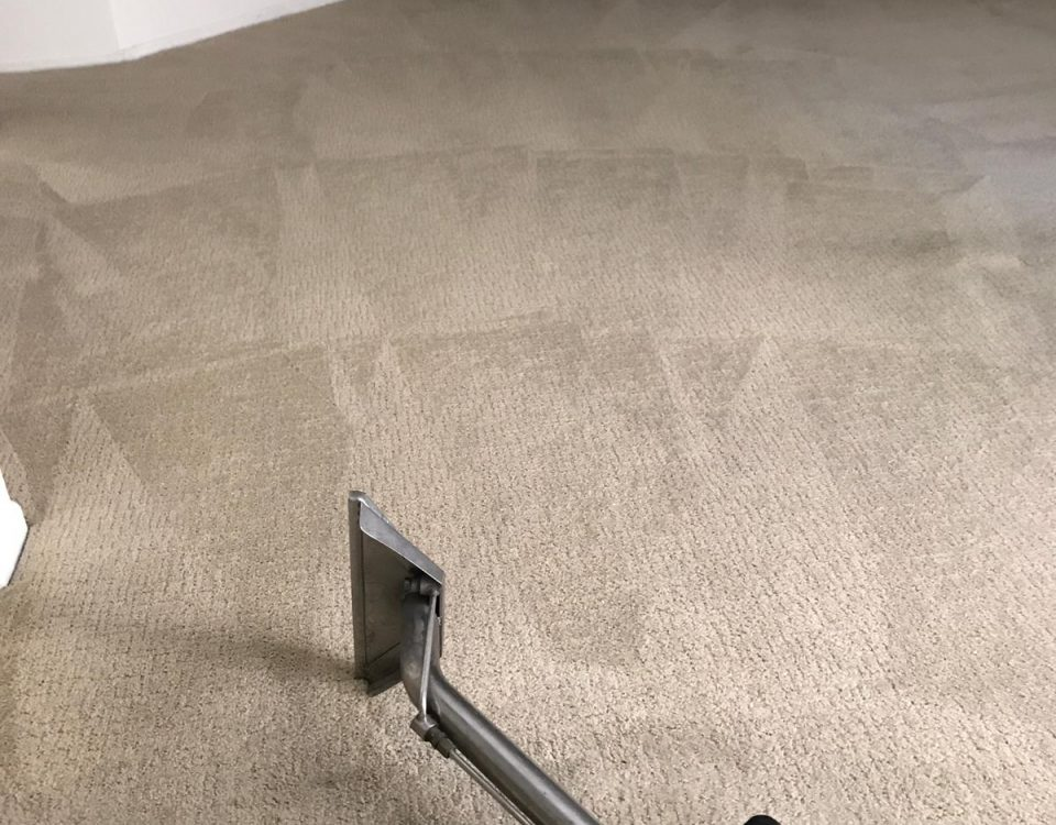 best carpet cleaning service in tustin
