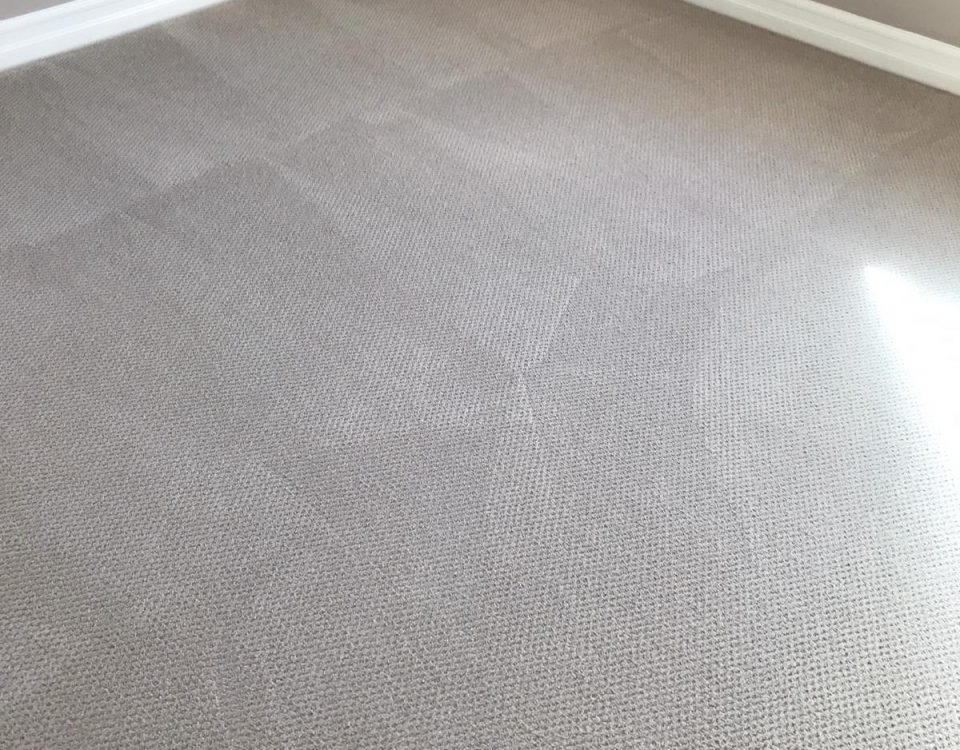 perfect carpet cleaning results