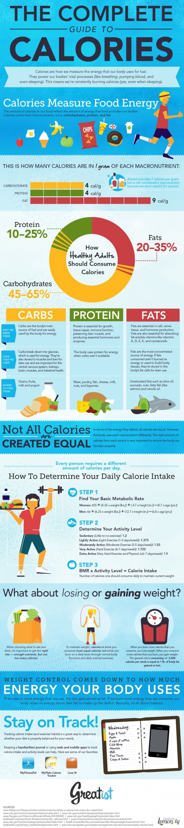 infographic for counting calories