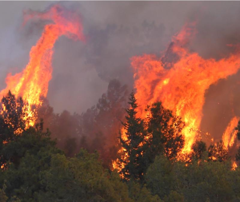 Fires in Haifa Israel