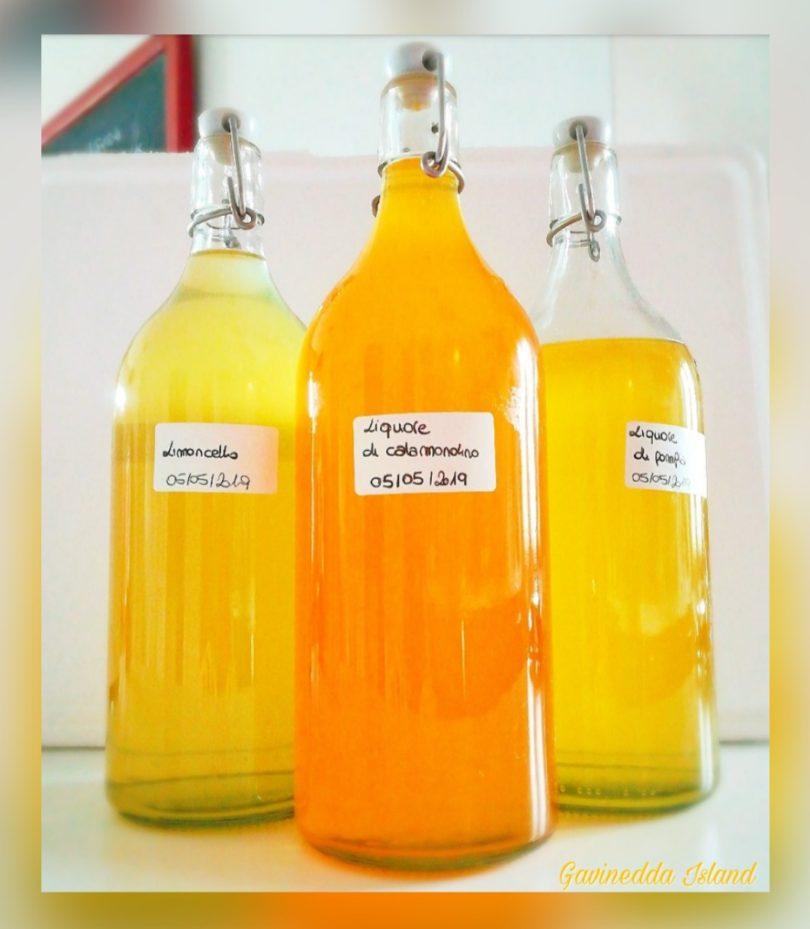 Limoncello-liquore-di-pompia-liquore-di-calamondino
