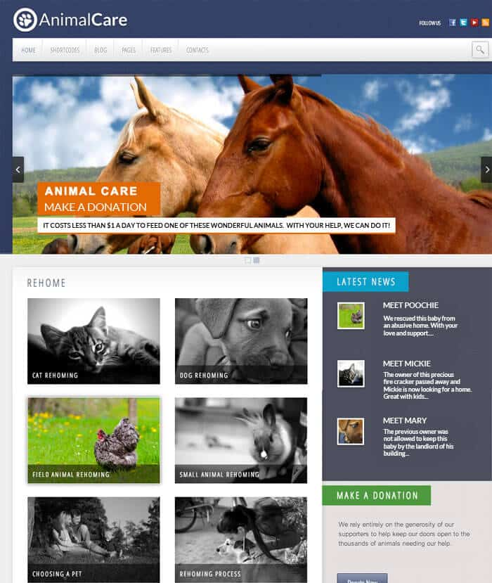 animal shelter website design