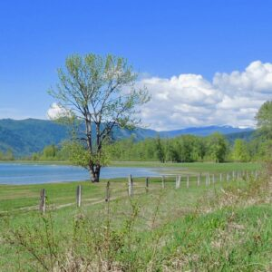 A springtime view of Rosemond Lake from the unfinished rail trail, photo by Jim Cooperman