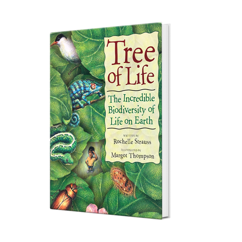 tree of life, rochelle strauss, author, children's book