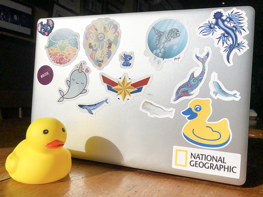 rochelle strauss, childrens author, writer, duck, book, laptop, one well, tree of life