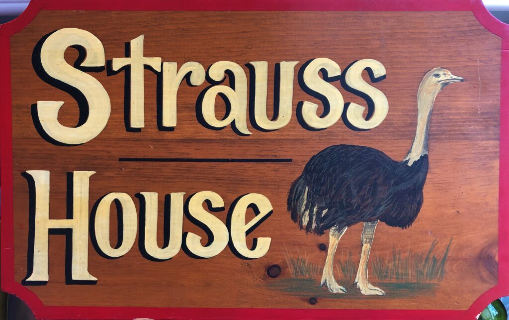 rochelle strauss, logo, ostrich, bird, author