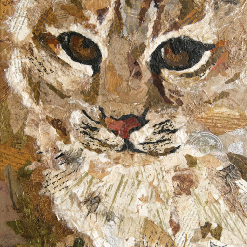 Bobcat - Art Althea - 14x18