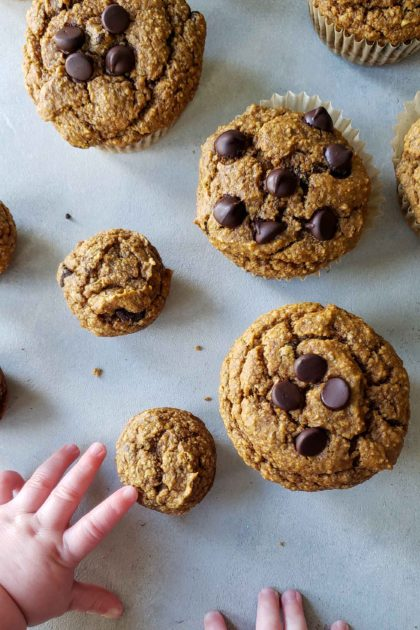 Sweet Potato Chocolate Chip Muffins with infant hand