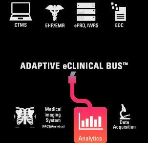 bus_analytics