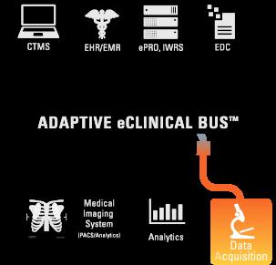 bus_data