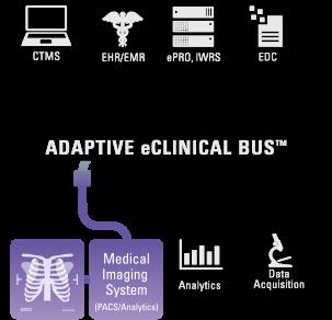 bus_medical