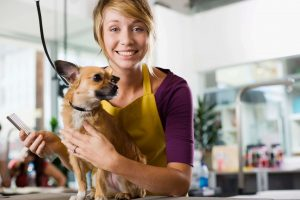 Women-owned businesses--dog grooming