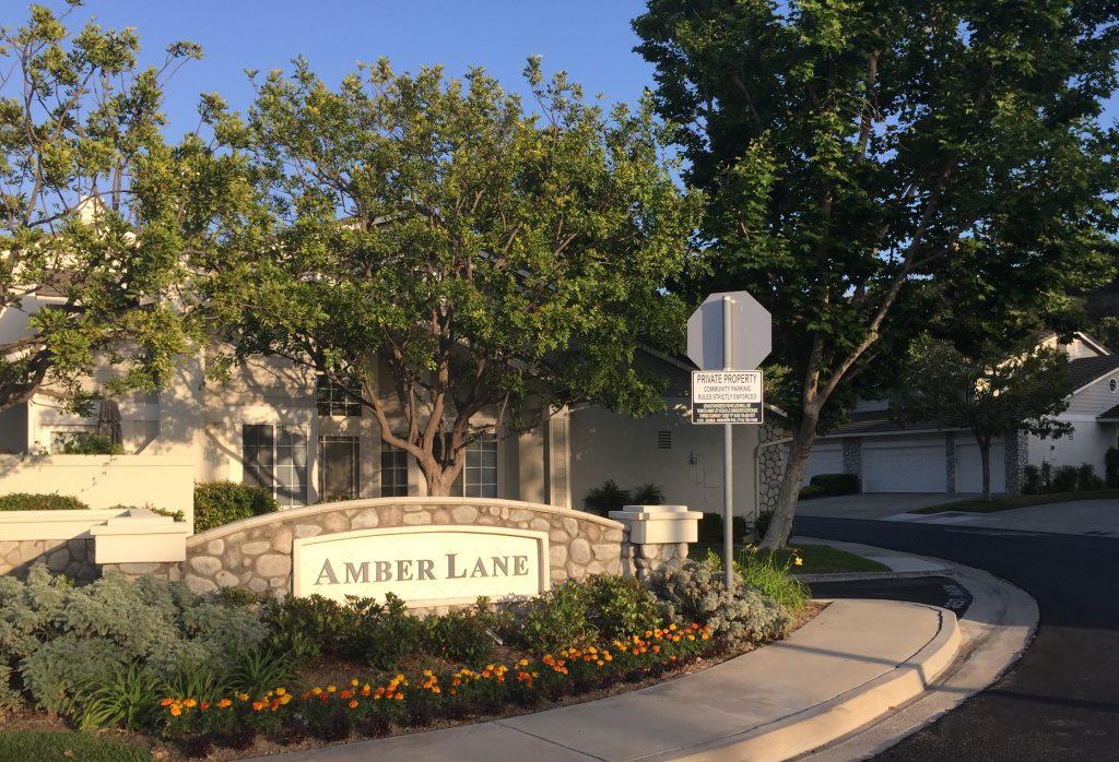 Amber Lane
