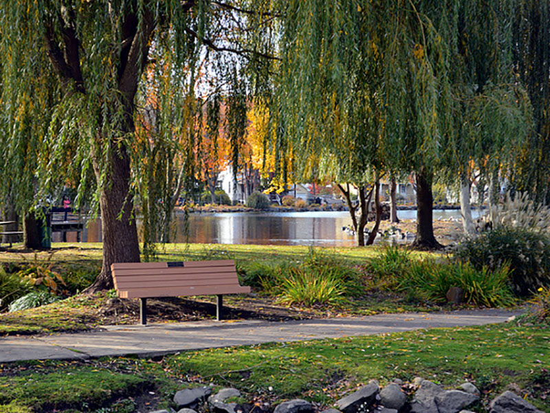 Park and Rec Image