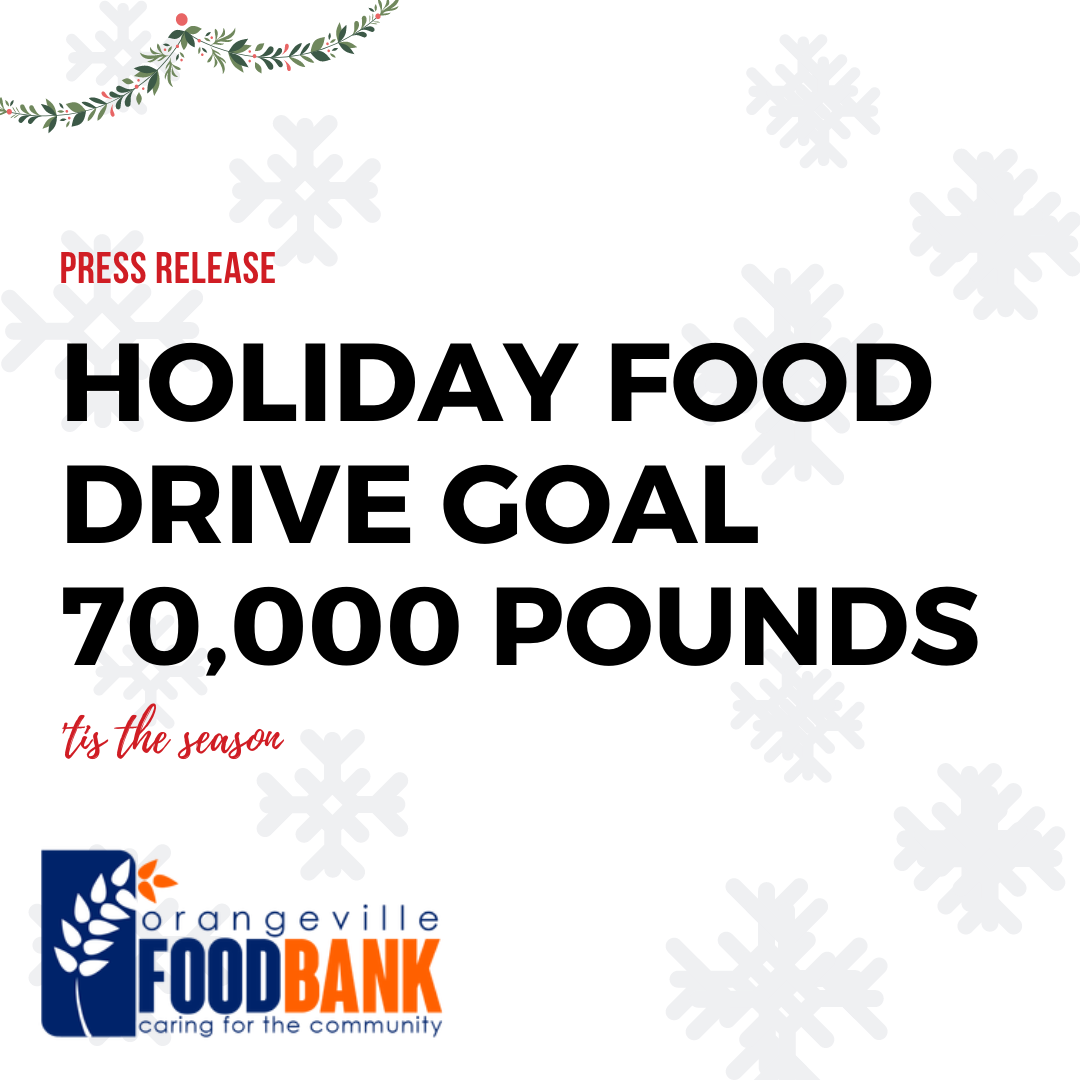 Holiday Drive Goal - 70,000 pounds