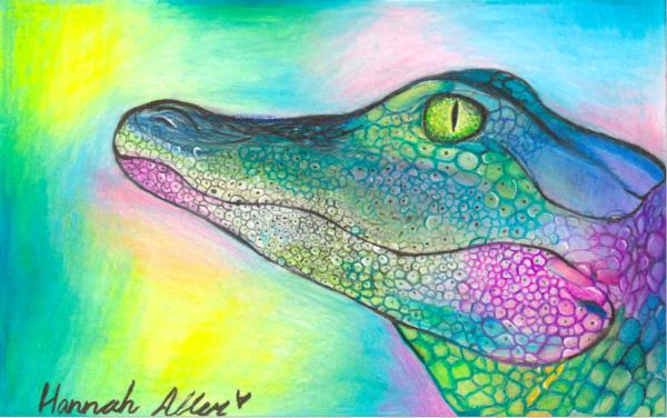 HMA Baby Crocodile