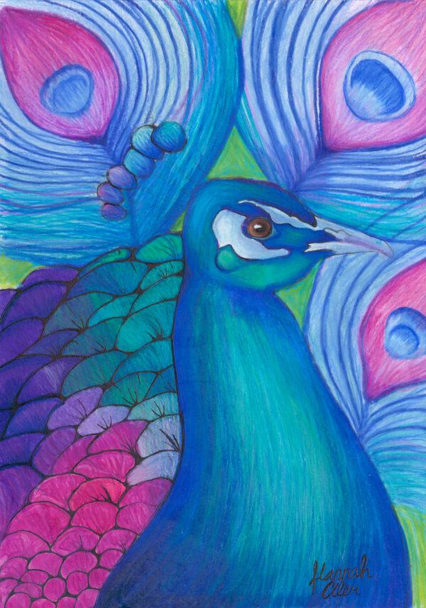 Peacock HMA