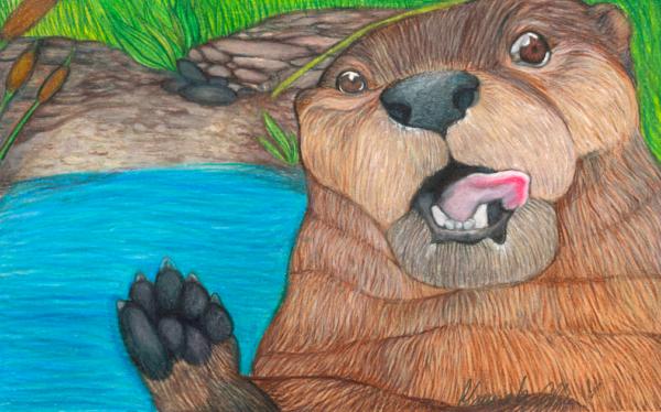 River Otter HMA