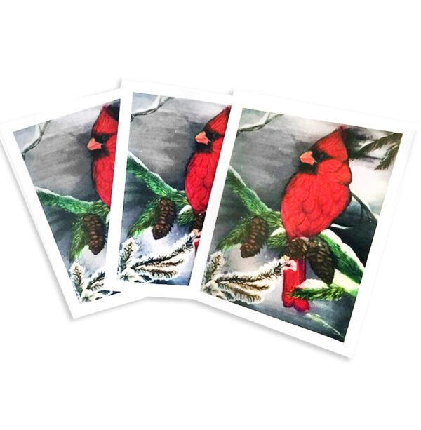 Cardinal Note Cards HMA