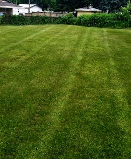 lawn-a-1