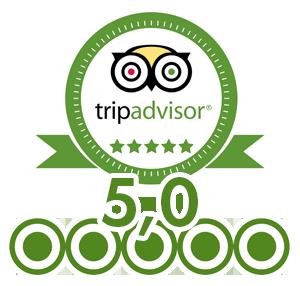 tripadvisor-300 (1)