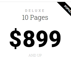 Deluxe – 10 Page Website