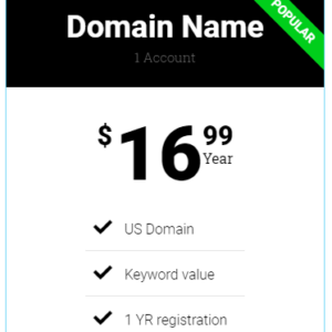 Domain Name – Standard